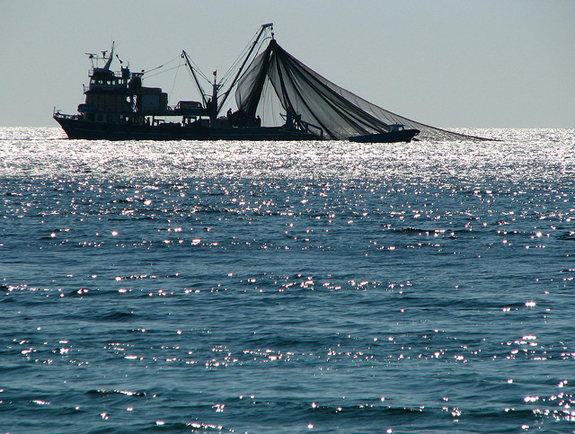 trawler-net
